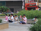 tai-meditatie,  Taiwan, Blue Elephant, Vogelreis